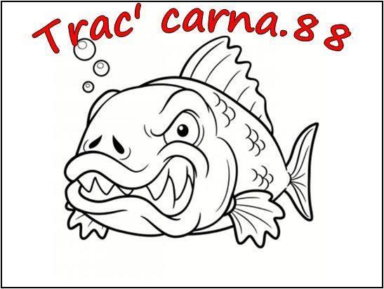 TRAC CARNA 88